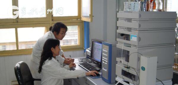 """周欣:用科技打破贵州中药民族药发展""""瓶颈"""""""
